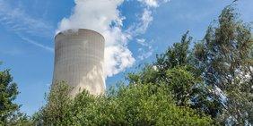 Rauchender Kühlturm Kohlekraftwerk mit blauem Himmel und Bäumen