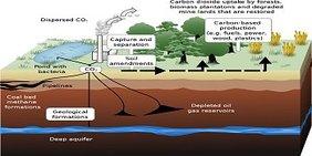 Grafik CO2-Abscheidung und Speicherung