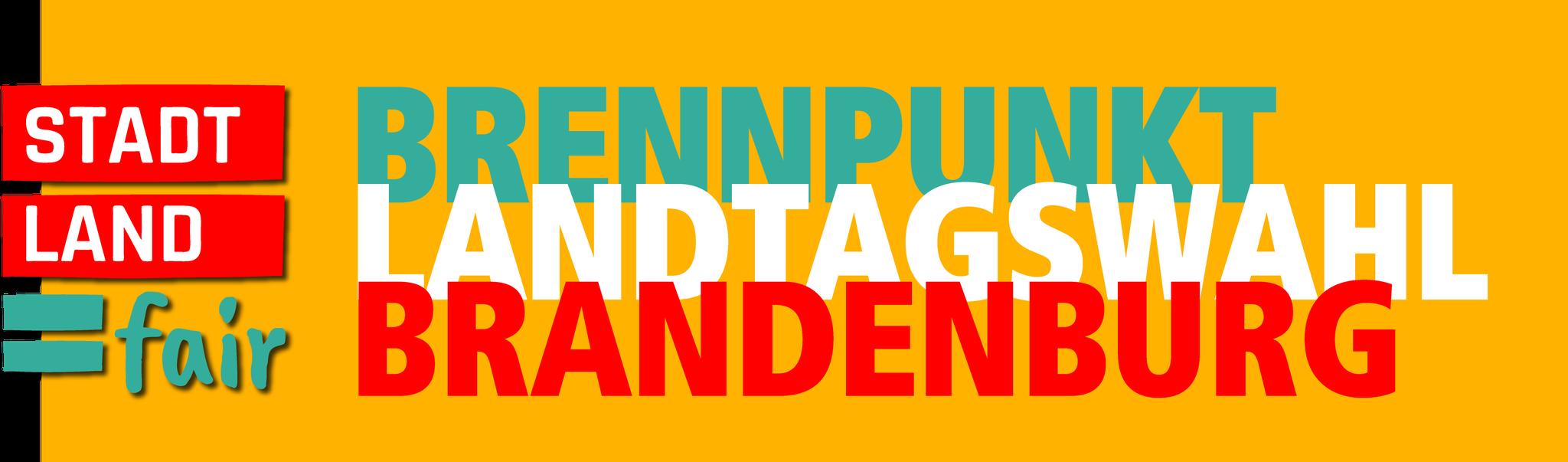Zur Themenseite Landtagswahl Brandenburg 2019
